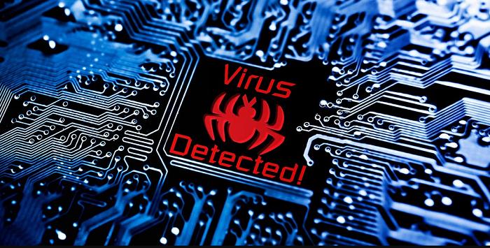 virus entry